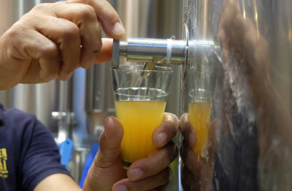 Craft-Beer-Terms-Explained-by-Peter-Bonner-at-BeerCat-Barcelona@2x